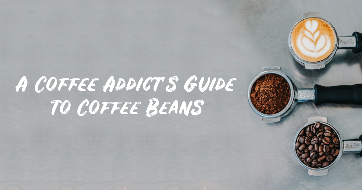 A Coffee Addict's Guide to Coffee Beans