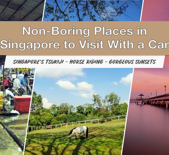 7 Hidden Places in Singapore to Visit if You Have a Car